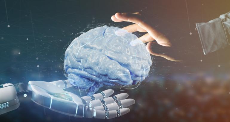 Les Neurosciences, Oui mais encore